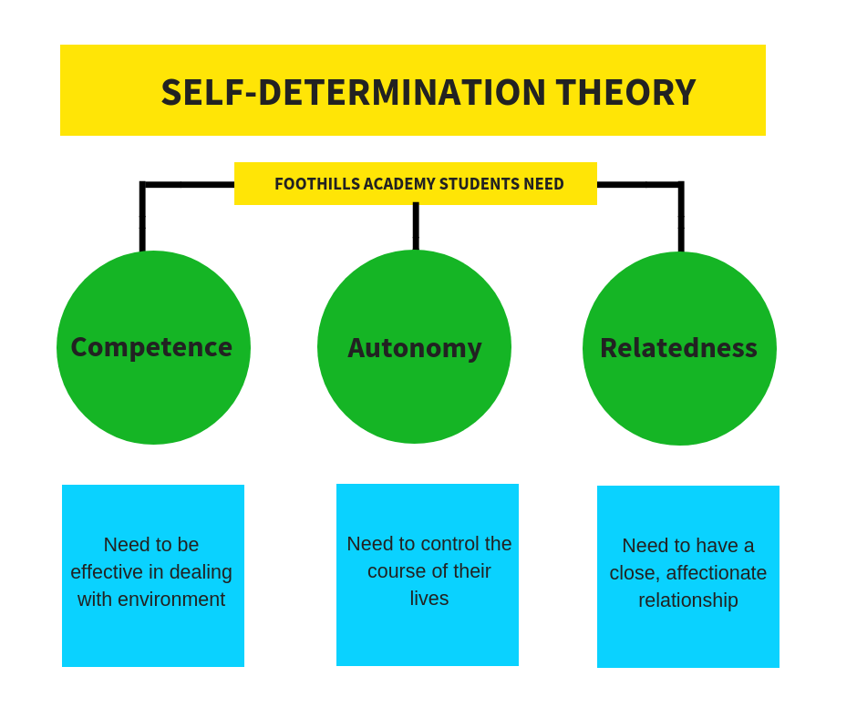 Self-determination Theory Illustration