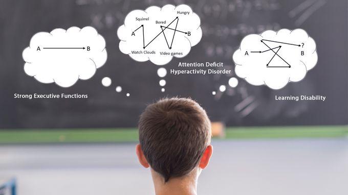 Executive Function vs ADHD vs LD